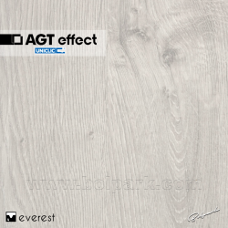 EVEREST PRK903 | AGT EFFECT 4V